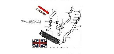 Genuine Jaguar X-Type 2.0Td Intercooler Hose C2S26986