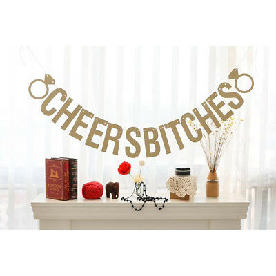 Cheers Bitches Bunting Banner Bridal Shower Hen Party Hanging Decoration