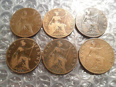 Small collection of Edward VII halfpennies.