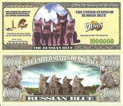 Russian Blue Cats Kittens Million Dollar Bills x 4 New