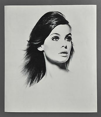 David Bailey 1965 Box of Pin-ups Halftone Photo Print 32x37cm Jean Shrimpton 60s
