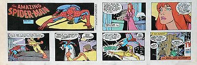 Amazing Spider-Man by Stan Lee & Flor Dery - lot of 12 Sunday comics from 1991