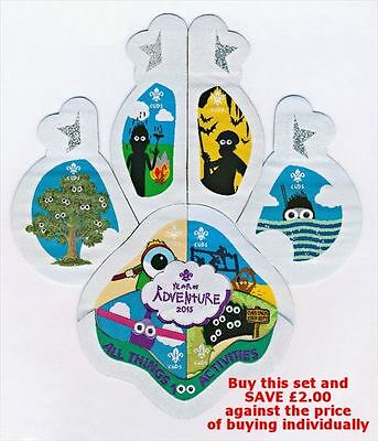 Cubs 100 Scouts Year of Adventure Badge Set