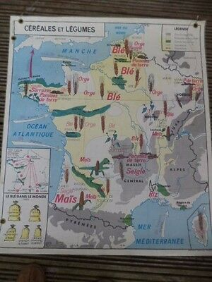 French Vintage School European  Double Sided  Map (Rivers + Agriculture) 1960