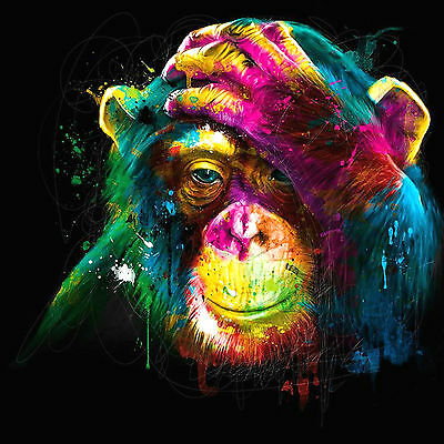 GLOSSY WALL ART POSTER PRINT Chimp Baby Monkey Hand On Head Colourful Abstract