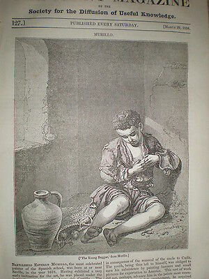 The Young Beggar and painter Murillo 1834 old print and article