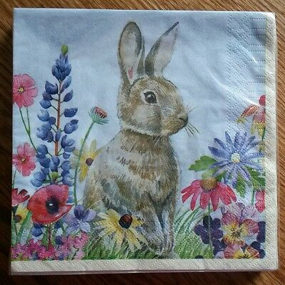 "20 ct 2 ply Paper Party Lunch Napkins 13"" ~ Easter Bunny Flowers Spring"