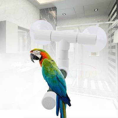Plastic Bird Perche Parrot Budgie Suction Cup Window Shower Bath Wall Stand Toy