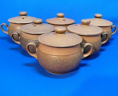 Vintage DENBY COTSWOLD Set of 6 Twin Handled SOUP COUPES/ BOWLS with LIDS - VGC
