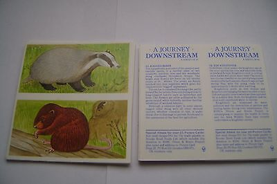A Journey Downstream Double Card Full Set By Brooke Bond