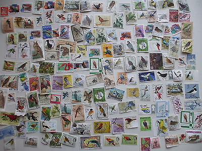 Nice Lot Loose Collection  150 Stamps Depicting Birds