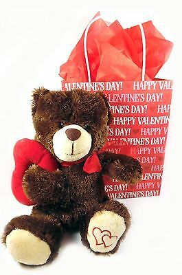 Valentine's Day Plush Bear in a Bag Gift