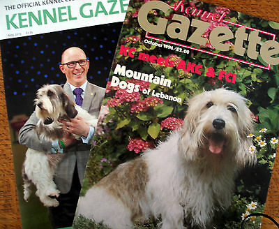 BASSET GRIFFON VENDEEN (PETIT) HOUND DOG BREED KENNEL CLIPPINGS 1970s -00s x 30