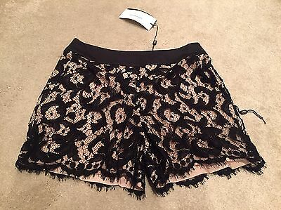Karen Millen Lace Shorts Brand New Great Gift