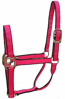 Hamilton 1-Inch Nylon Quality Halter for 500 to 800-Pound Horse Small Neon Re...