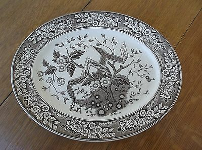 "antique AESTHETIC BROWN BEATRICE TRANSFERWARE LARGE 14"" PLATTER 1860s WEDGWOOD"