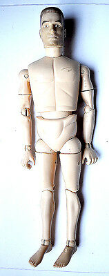1/6 scale - BODY  -  FIGURE W/ HEAD AND HANDS