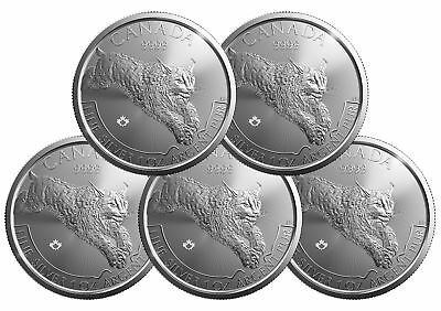 Lot of 5 - 2017 $5 1oz Canadian Silver Lynx Coin .9999 Fine BU