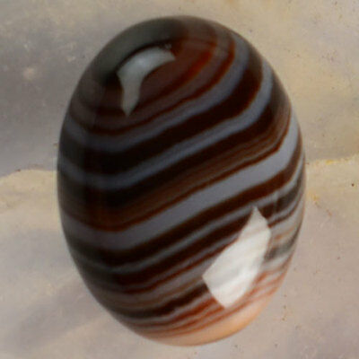 P67206 15x11x6 Stripes Agate Oval CAB Cabochon