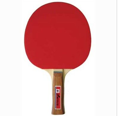SwiftFlyte Storm Table Tennis Ping Pong Paddle Racket Concave Handle NEW