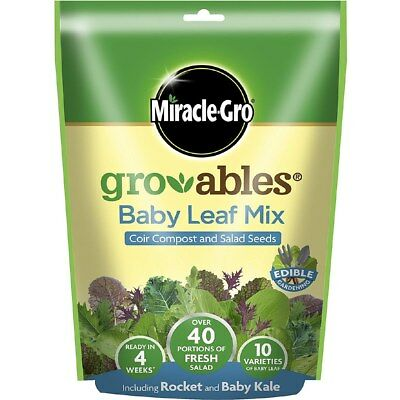 Miracle-Gro Gro-Ables Baby Leaf Salad Seed Mix 573477