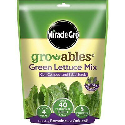 Miracle-Gro Gro-Ables All Green Lettuce Seed Mix 573469