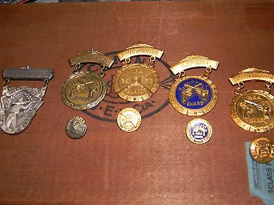 Vintage NRA Shooting Award Badge Medal Collection Of 5 & pins