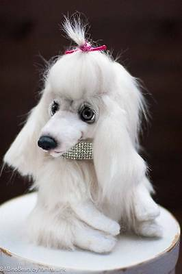 """OOAK Artist White Poodle Teddy Dog """"Scarlett"""" Toy Poodle Puppy, Pudel"""