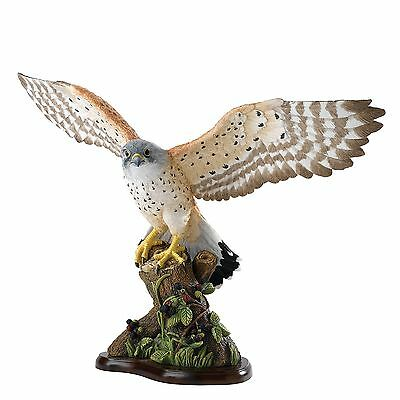 Border Fine Arts Large Kestrel A27052 - Birds Collection - New In Box