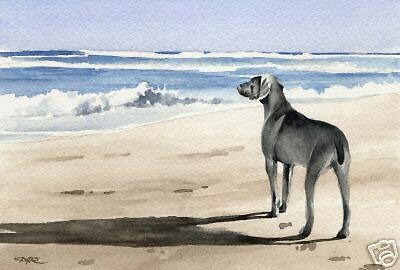 WEIMARANER Painting Dog 8 x 10 ART Print Signed by Artist DJR