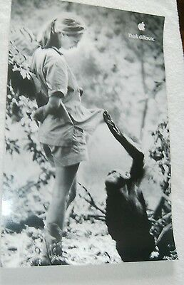 apple think different poster    DR jane goodall AND CHIMP