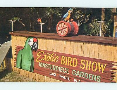 Unused Pre-1980 EXOTIC BIRD SHOW AT MASTERPIECE GARDENS Lake Wales FL Q7972