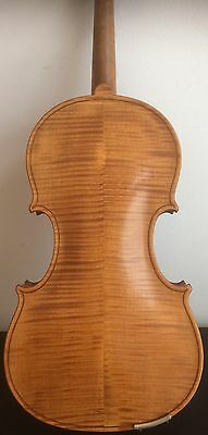 Old violin with case and bows (2)