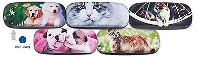 Hard Shiny Eyeglass Case Adorned With Photo Of Adorable Golden Retriever Puppies
