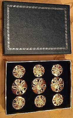 Nice Boxed Set of Nine Sand Dollar Buttons