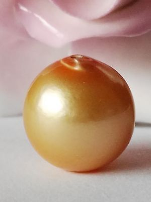 12.80mm!! GENUINE GOLDEN LOOSE SOUTH SEA PEARL  UNTREATED+ DRILLED