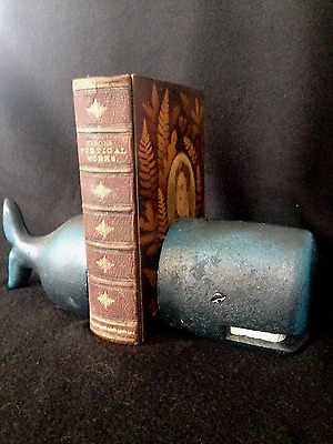 Cast Iron Whale Book Ends