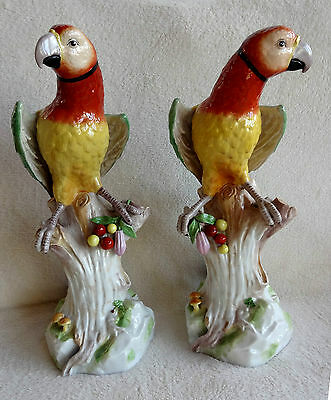 Huge Magnificent 46cm Pair 19th Century Porcelain Parrots