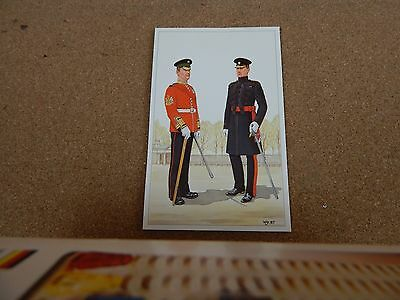 Military uniforms Irish Guards Regimental sergeant Major .unposted