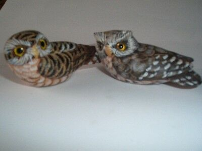 Painted Wooden Owls x 2, Very Collectable.