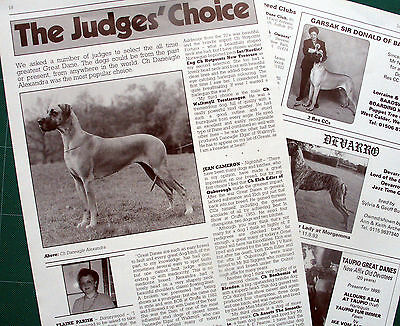 GREAT DANE DOG BREED KENNEL CLIPPINGS inc. Judges Choice art. 1990s - 2000s x 35