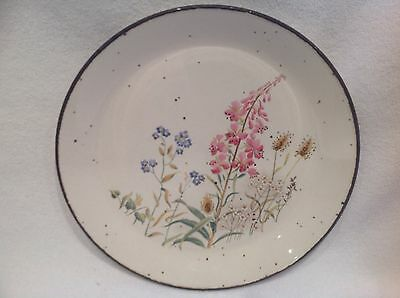 J & G Meakin Lifestyle Ironstone Dinner Plate.