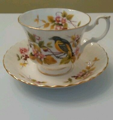 "Vintage Royal Albert Woodland Series "" Baltimore Oriole "" Tea Cup and Saucer"