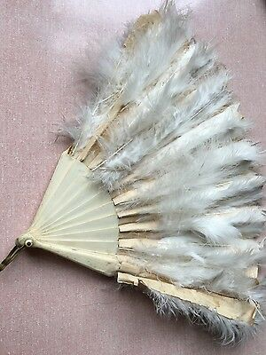 Antique Victorian Ladies Feather Fan - Theatrical Costumiers