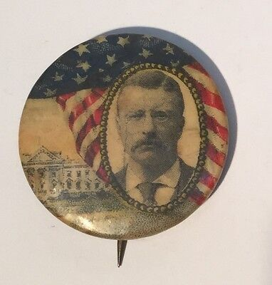 Teddy Roosevelt Flag White House Political Campaign Button Pin Pinback Celluloid
