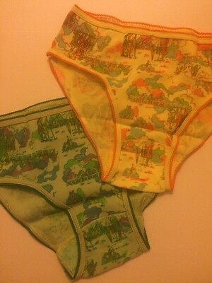 2 Pairs of Vintage Knickers 1970s Novelty Print
