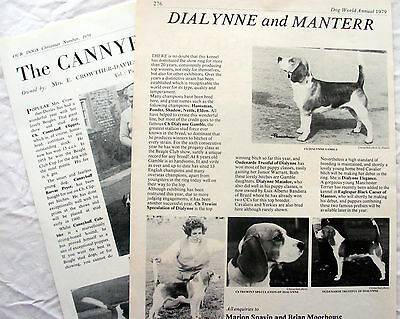 BEAGLE HOUND DOG BREED KENNEL CLIPPINGS 1950s - 2000s x 40