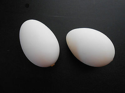 """Two Blown Goose Eggs 9 1/2"""" and 9"""" for Ukrainian Easter Egg, Pysanky Decorating"""