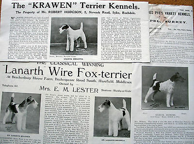 WIRE FOX TERRIER KENNEL CLIPPINGS 1920s - 1940s  x 40