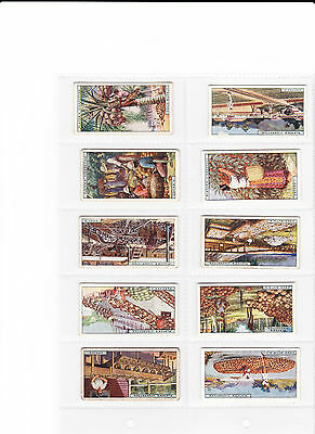 PRODUCTS OF THE WORLD)- Player 1928- 43/50- VG37,G2,F3,P1.